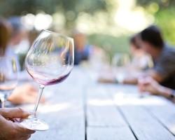 Kam za vínem? Do Maďarska, Rakouska, Česka i na Slovensko