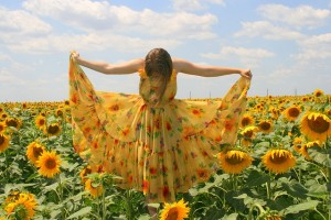 sunflower-834987_640