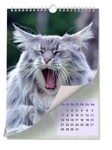 02-kalendar s kockou