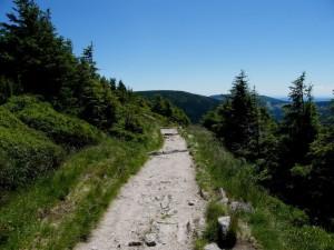 Vyrazte na rodinnou dovolenou do Lužických hor! Proč a kam?