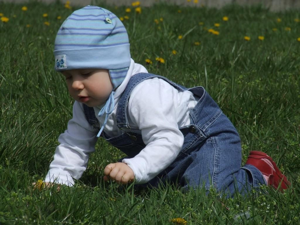 toddler-1083863_1280