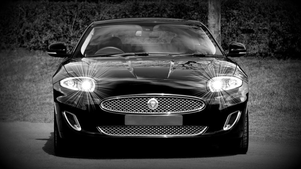 jaguar-1366978_1280