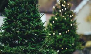 Myslete na vánoční osvětlení s předstihem