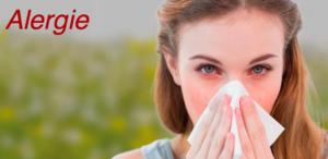 A zase ta alergie!